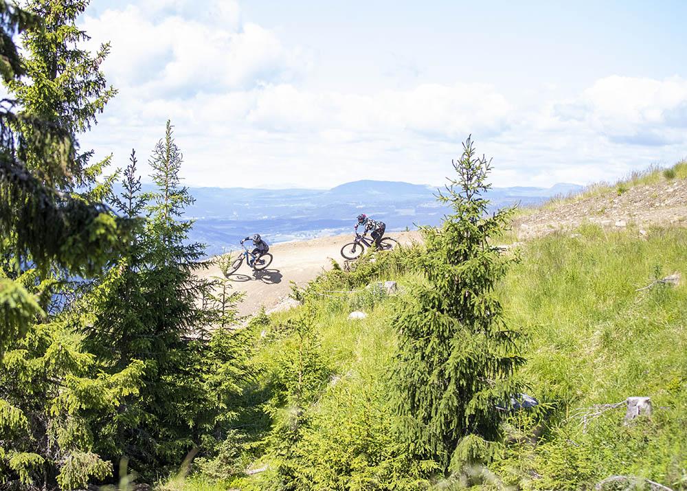 Sykkel i Hafjell